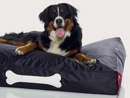 Heimtierbedarf Hundelounge