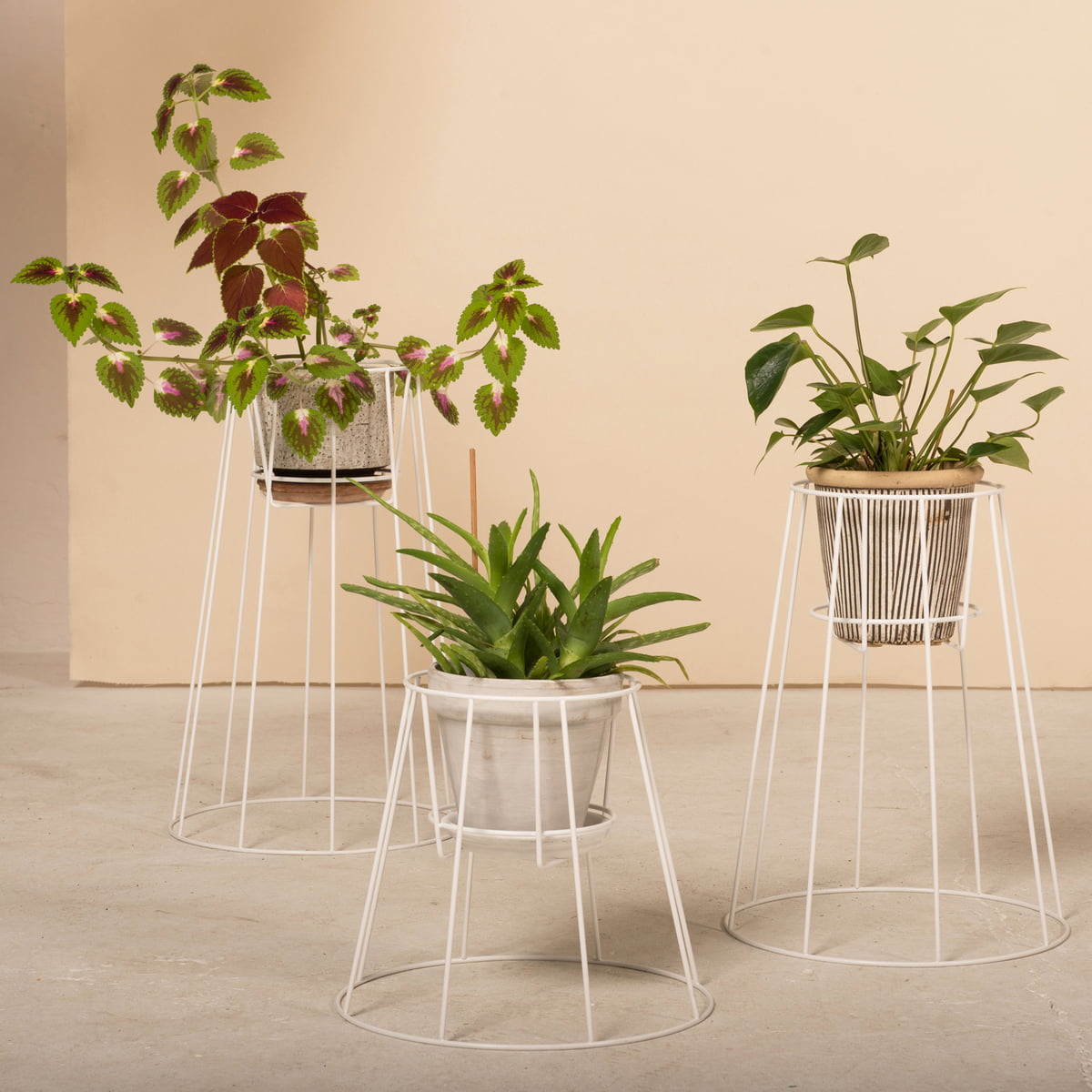 cibele blumentopfst nder von ok design. Black Bedroom Furniture Sets. Home Design Ideas