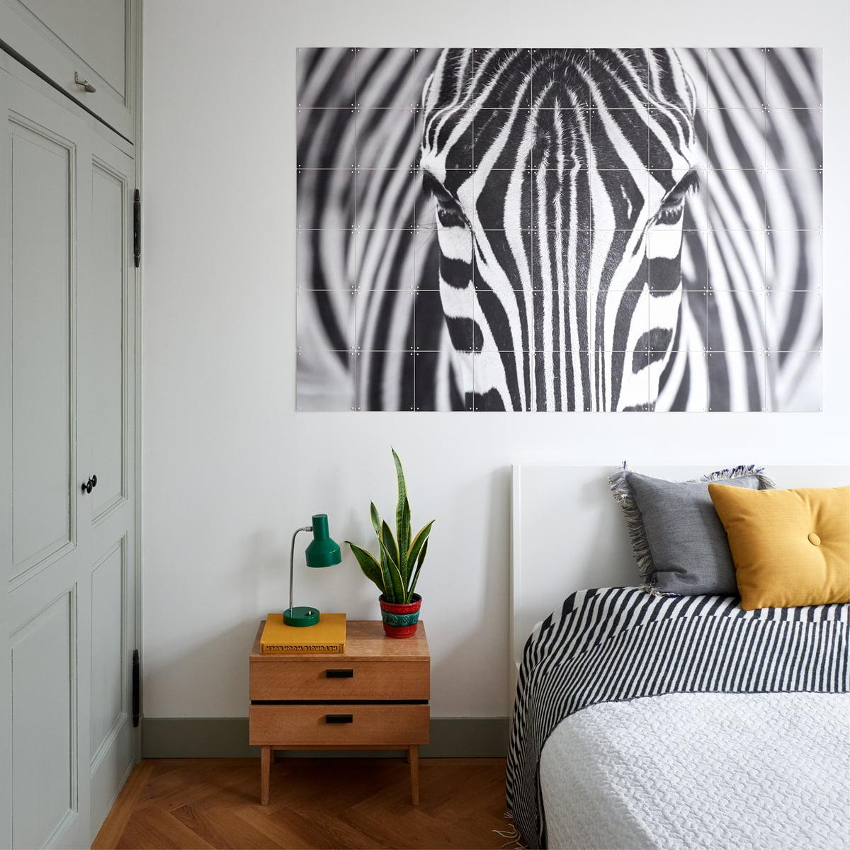 Zebra von IXXI   Connox Shop