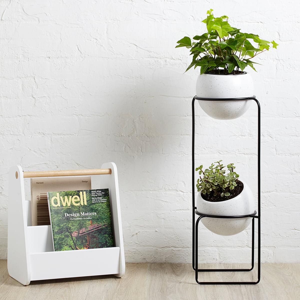 nesta freestand pflanzenst nder von umbra connox. Black Bedroom Furniture Sets. Home Design Ideas