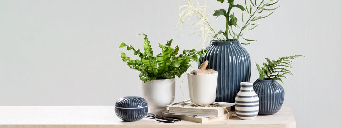 Flashsale: stilvolle Vasen für den Frühling