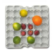 Korn Produkte - Eierschale aus Beton