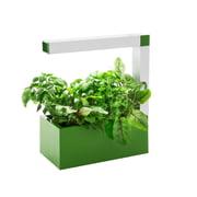 Tregren - Herbie Indoor Garden