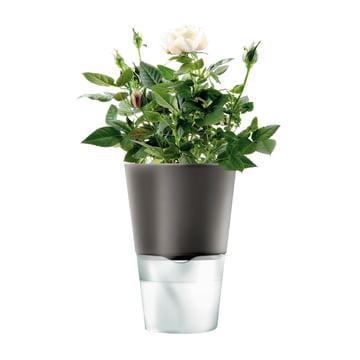 Selbstbewässernder Blumentopf von Eva Solo
