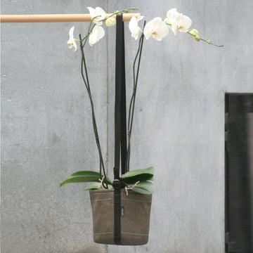Bacsac Pot Suspendu Hängetasche - Orchidee