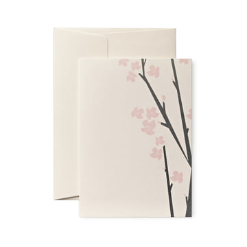 pleased to meet - Cherry Blossom Frei