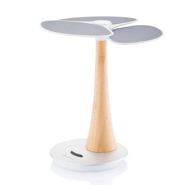 XD Design - Ginkgo Solar-Ladestation