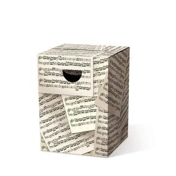 Remember - Der geniale Papphocker, Allegro