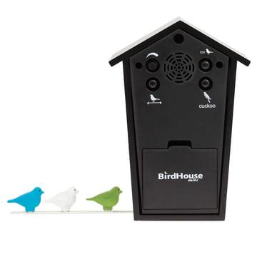 KooKoo - Bird House Mini schwarz, Rückseite und farbige Vögel