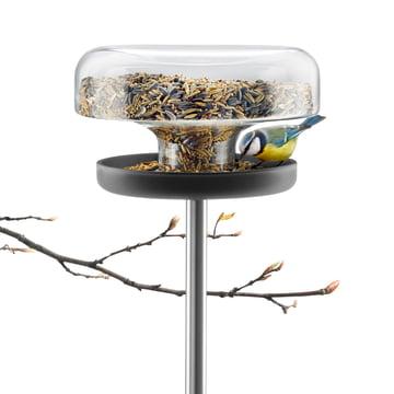 Eva Solo - Bird Table, mit Vogelfutter und Ast