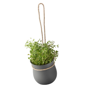 Grow-It Kräutertopf von Rig-Tig by Stelton in Grau