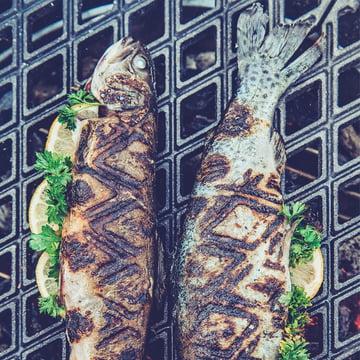Gussrost für Fleisch und Fisch