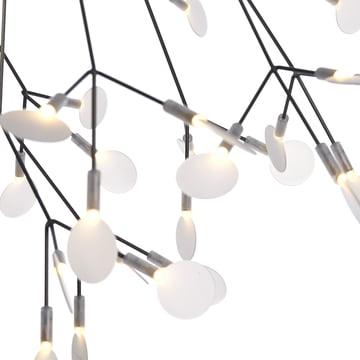 Technische und organische Leuchte