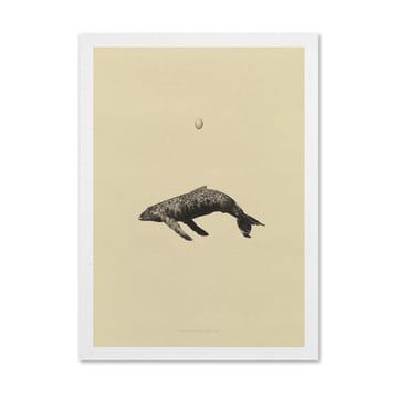 "Grafik ""Whale Original"" von Paper Collective"