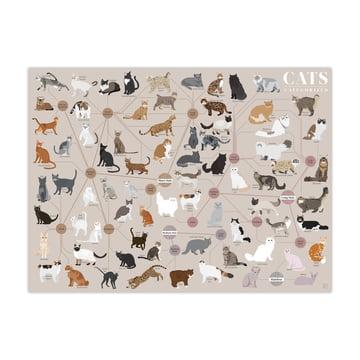 Cats Categorized 61 x 46 cm von Pop Chart Lab