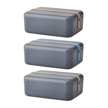 Rig-Tig by Stelton - Keep-It Cool Frühstücksdose, blau / grau / rosa Silikonband