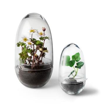 Grow Gewächshaus von Design House Stockholm