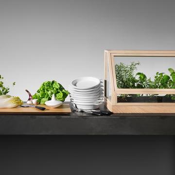 Greenhouse Mini von Design House Stockholm in Esche