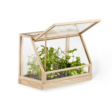 Design House Stockholm - Greenhouse Mini, Esche