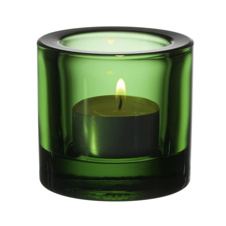Kivi Teelichthalter, grün