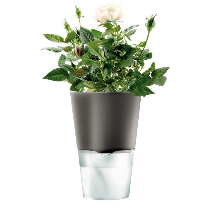 Blumentopf - klein, dunkelgrau