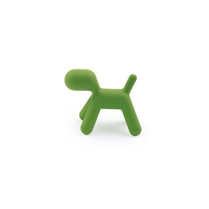 Puppy S, grün