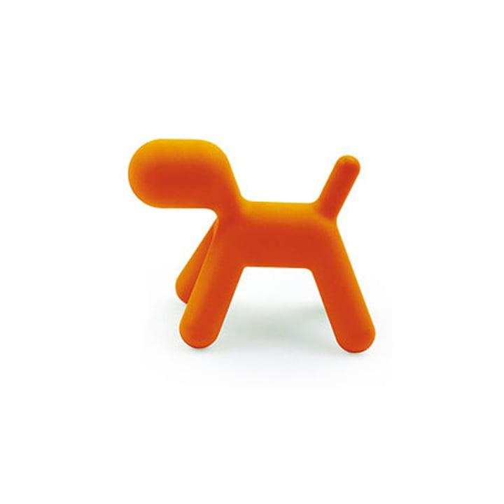 Puppy M von Magis Me Too in orange