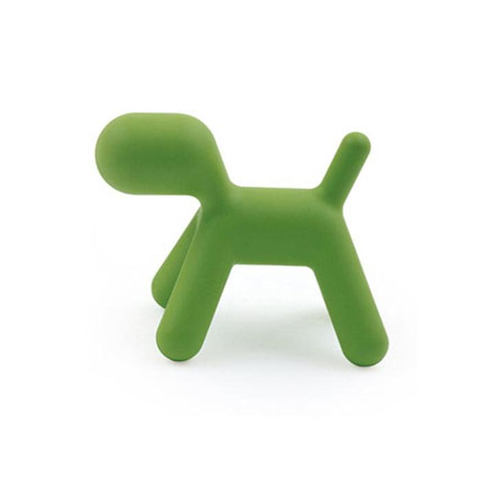 Puppy L von Magis in grün