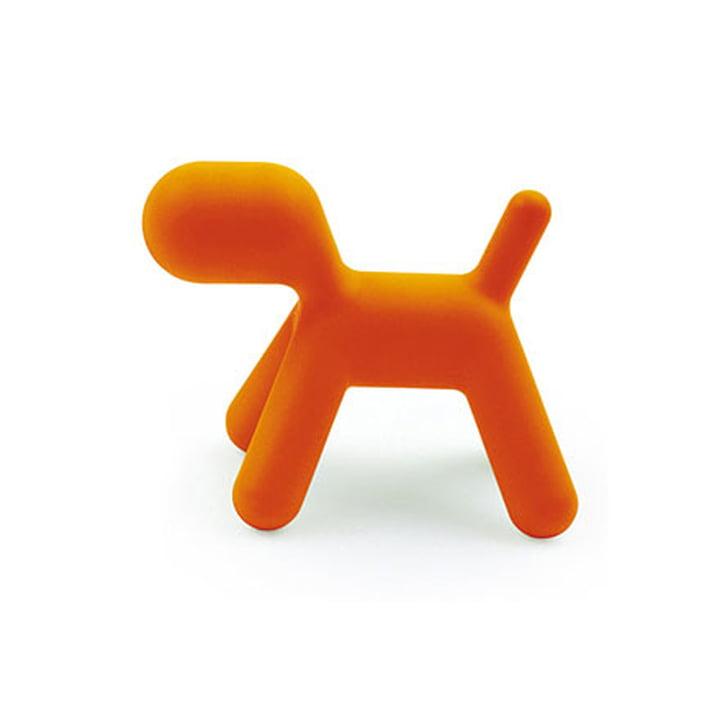 Puppy L von Magis Me Too in orange