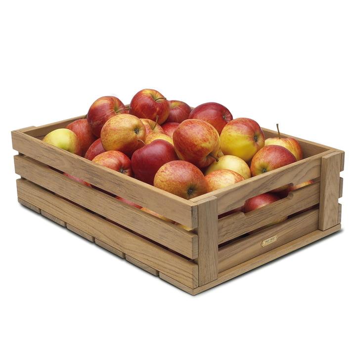 Skagerak Dania Apfelkasten