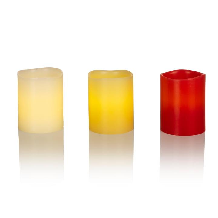 LED Echtwachskerze von Klein & More