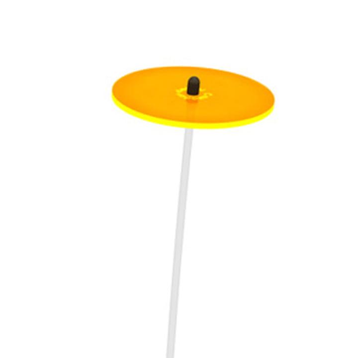 Cazador del sol - Mini, gelb