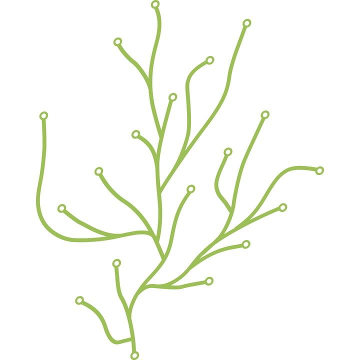 Vitra Algues, hellgrün