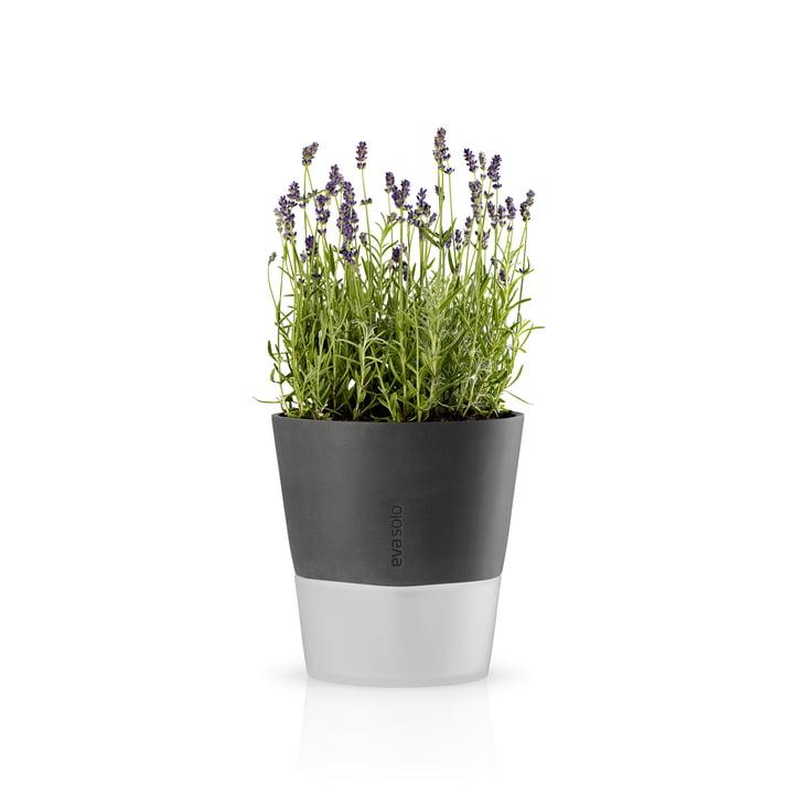 Eva Solo - Blumentopf Ø 20.5 cm, stone grey