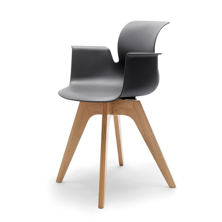 Flötotto - Pro 6 Armchair, Viersternholzgestell, Eiche klar lackiert, schwarz