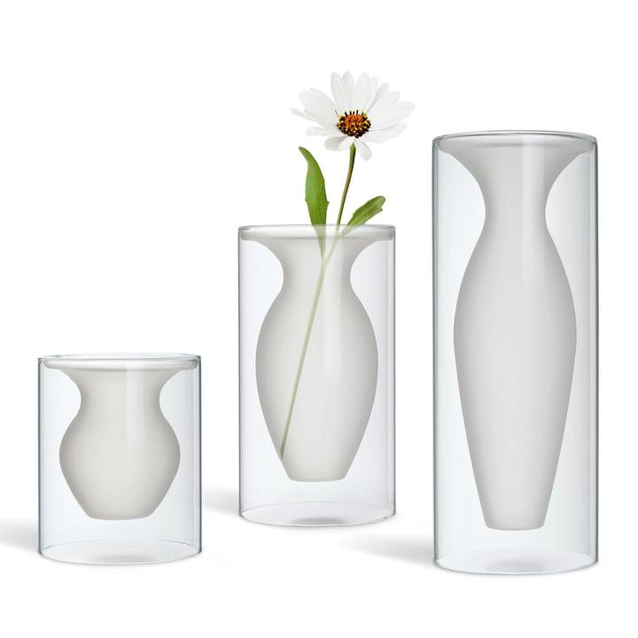 Esmeralda vase von philippi im shop for Wohndesign vasen