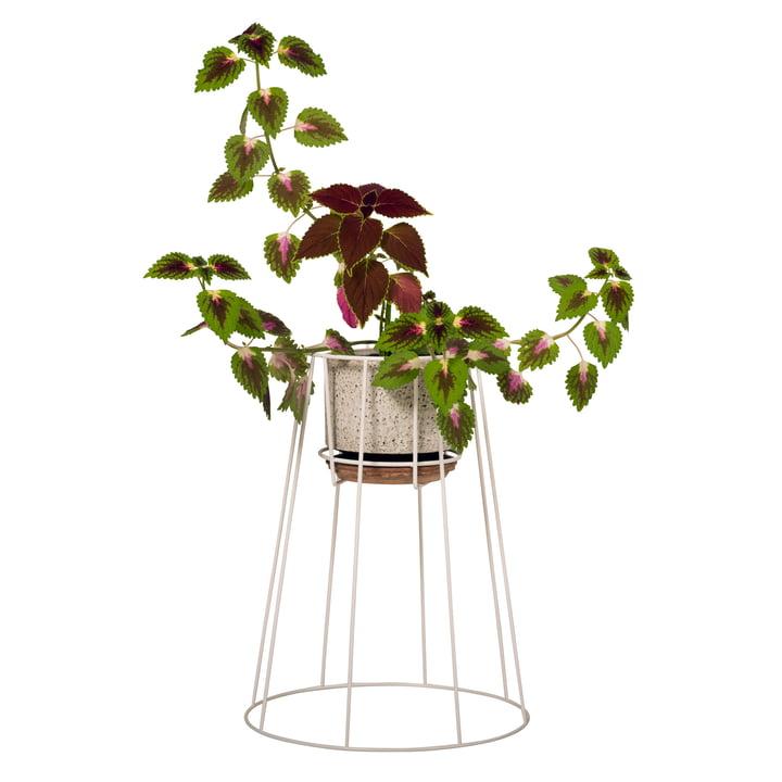 OK Design - Cibele Blumentopfständer Medium, weiß