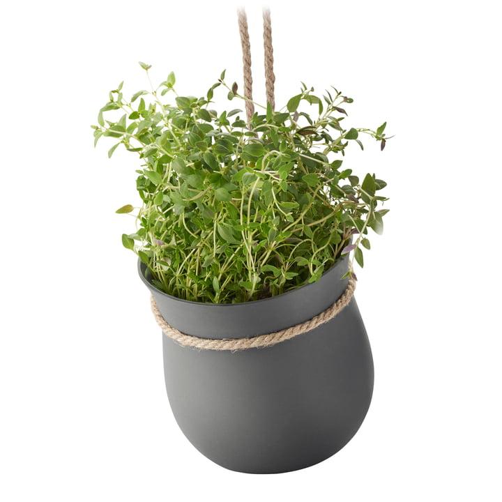 Grow-It Kräutertopf von Rig-Tig by Stelton