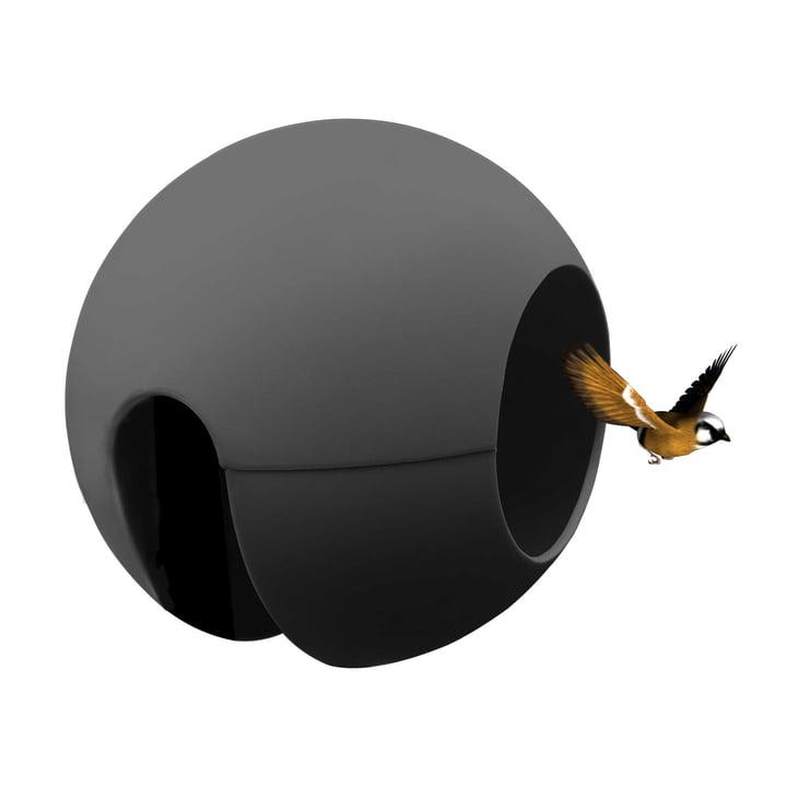 Die rephorm - ballcony birdball Futterstelle in anthrazit