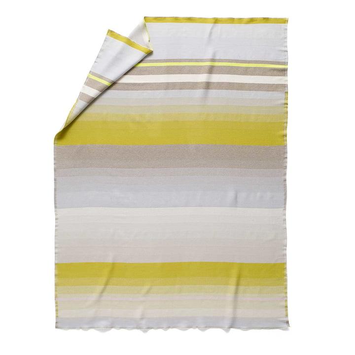 Colour Plaid Wolldecke Farbe: No. 8 von Hay