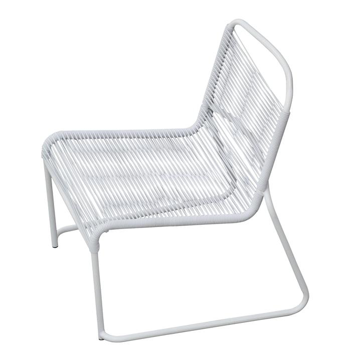 Lido Spaghetti Lounge-Sessel von Fiam in weiß