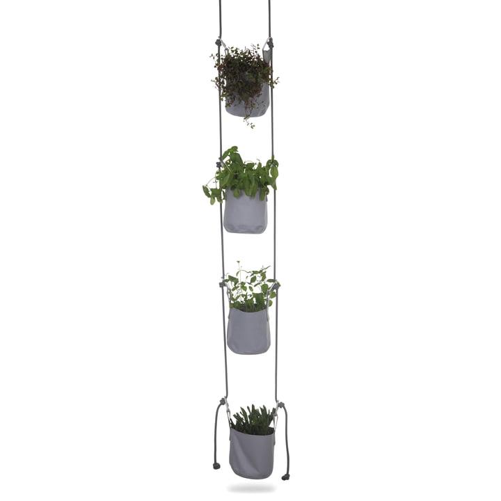 Vertical Flowerpots von Trimm Copenhagen in Grau