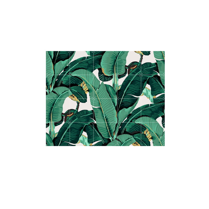 Banana Leaf von IXXI 100 x 80 cm
