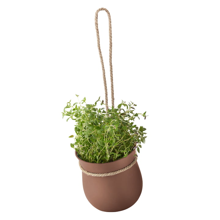 Grow-It Kräutertopf von Rig-Tig by Stelton in Terrakotta