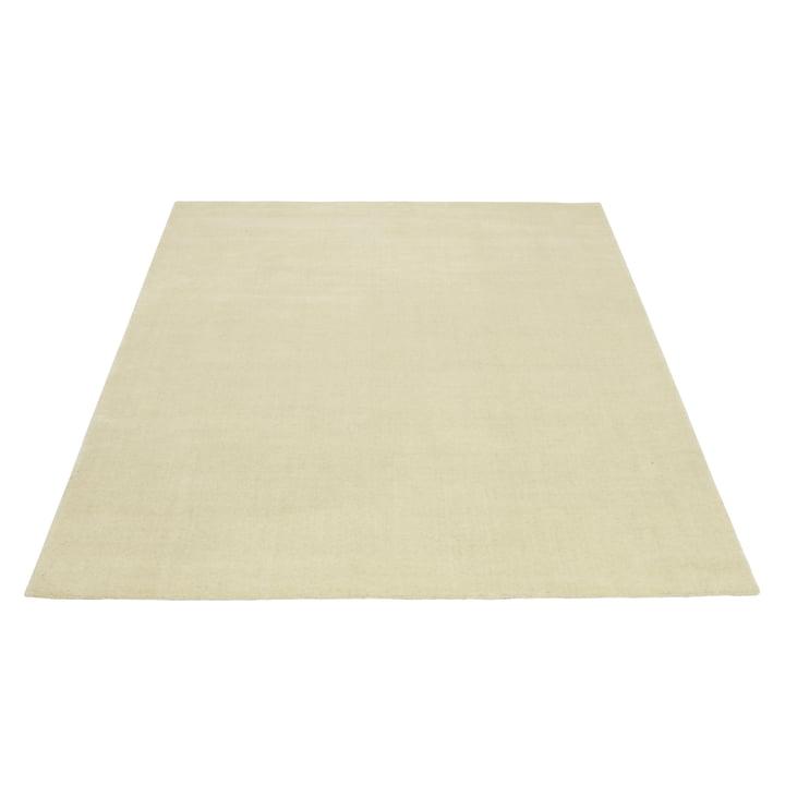 Der Massimo - Earth Teppich 200 x 300 cm in créme