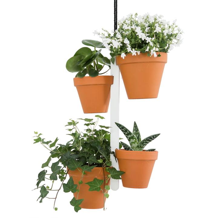 Blumenampel für Kräuter und Blumen-Töpfe