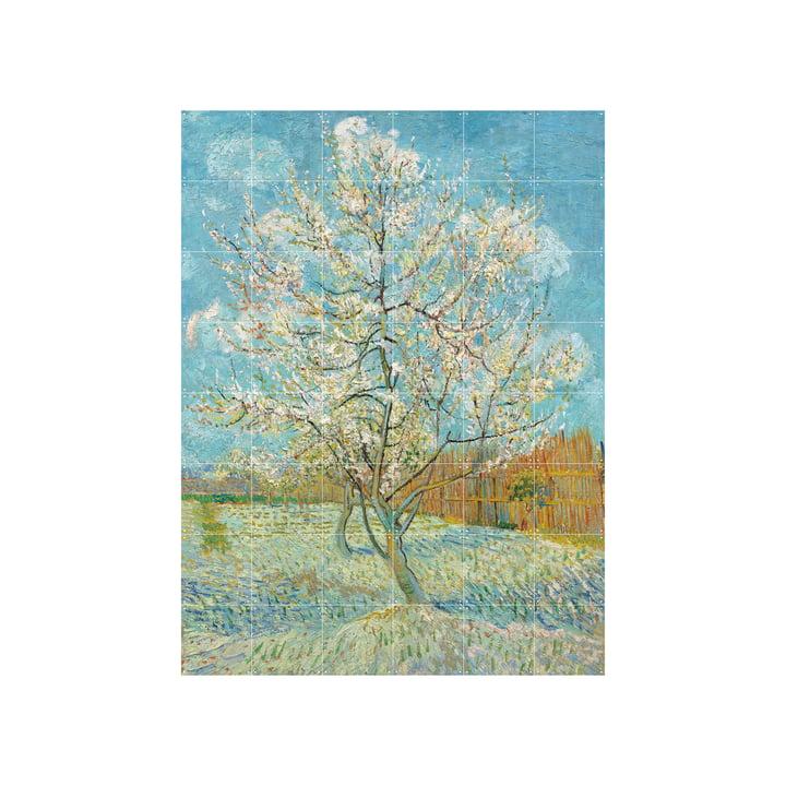 Blühender Pfirsichbaum (Van Gogh) 120 x 160 cm von IXXI