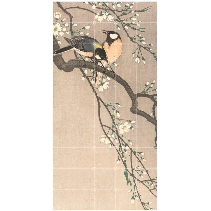 Kohlmeisen auf einem Kirschbaum (Koson) 100 x 200 cm von IXXI