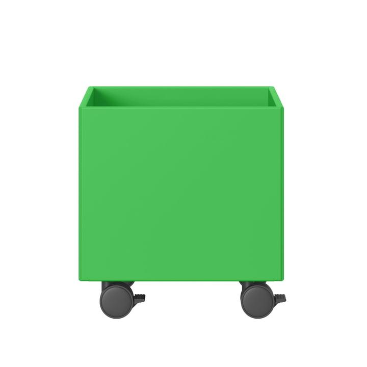 Play Spielzeugkiste von Montana in umami green