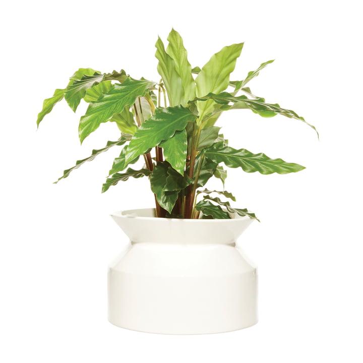 Spool Pflanztopf Medium von Boskke in weiß
